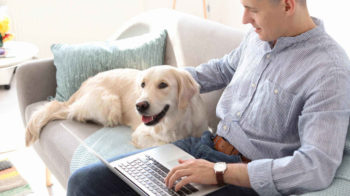 Best 3 Pet Health Insurance Providers Covering TPLO Surgery for Dogs