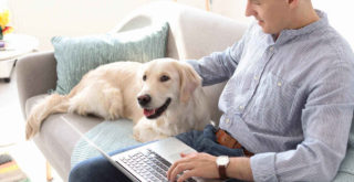 Best 3 Pet Health Insurance Providers Cover TPLO Surgery for Dogs